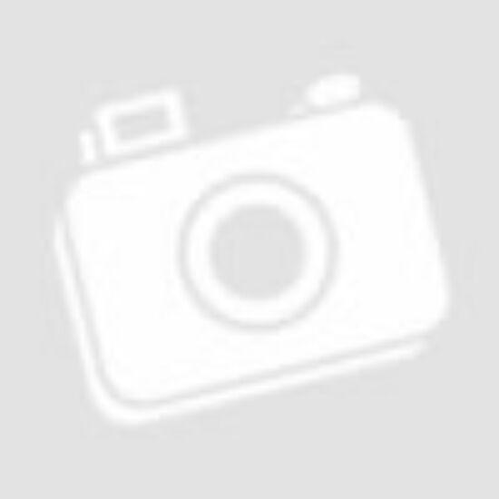MOTOROLA GP300 UHF RÁDIOSTANICA VYSIELAČKA